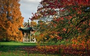 RHS Garden, Wisley, England, Висли, Англия, ботанический сад, пагода, беседка, деревья, осень