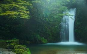 Shiraito Falls, Fujinomiya, Japan, водопад Шираито, Фудзиномия, Япония, водопад, лес, деревья
