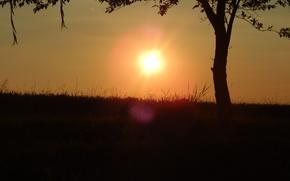 coucher du soleil, Sun, nature