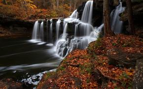 Brush Creek Falls, West Virginia, Virginia Dell'ovest, cascata, cascata, fiume, autunno, fogliame, foresta