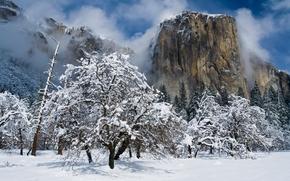 El Capitan, Yosemite National Park, California, Góra El Capitan, Yosemite National Park, Yosemite, California, zima, śnieg, drzew, Góry