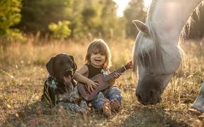 мальчик, собака, лошадь, конь, друзья, дружба, гитара
