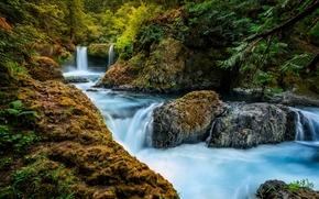 Spirit Falls, Little White Salmon River, Washington, водопад, река, лес