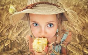 girl, hat, apple, view, field, ears of corn
