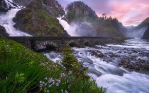 Latefossen, Odda, norvegia, Lotefoss, Dispari, Norvegia, cascata, cascata, fiume, ponte, Rocce, Montagne, pietre, Fiori