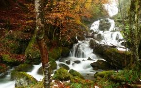 лес, деревья, осень, водопад, камни, мох, природа