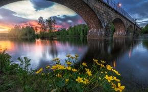 Ringerike, Norway, Honefoss, Хёнефосс, H?nefoss, Рингерике, Норвегия, река, мост, закат, цветы