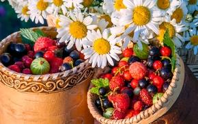 ягоды, ромашки, цветы, туески