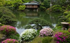 Sorakuen Garden, Kobe, Japan, парк Соракуэн, Кобе, Япония, парк, пруд, озеро, деревья, кусты, рододендроны, хижина