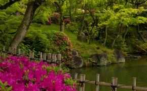 Sorakuen Garden, Kobe, Japan, парк Соракуэн, Кобе, Япония, парк, вода, забор, деревья, кусты, рододендроны