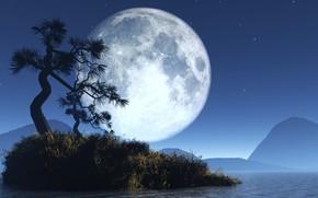 moon, night, tree, bush, Mountains, water, Star
