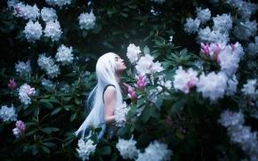 Maria Elige Aliaeva, белые волосы, рододендроны, цветы, настроение