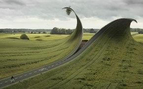 дорога, поле, небо, дерево, велосипед, прикол, лес трава