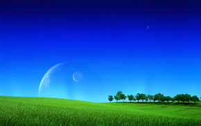 campo, cielo, alberi, Planet