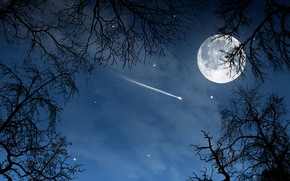 landscape, night, moon, month, Star, trees, nature
