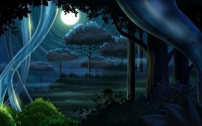 luna, plenilunio, notte, foresta, alberi, tronchi, cespuglio, fogliame, erba, haze, Fireflies