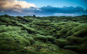 green, Hills, moss, trees, Ireland, sky, obloka