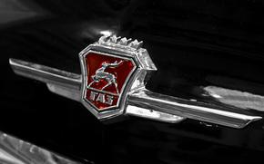 gás, carro, URSS, CLÁSSICOS, Frente, preto, emblema