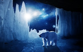 lodowiec, Niedźwiedź polarny, światło