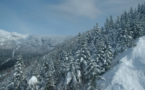 Stowe, Vermont, Mount Mansfield, Stowe, Vermont, Mount Mansfield, Montagne, inverno, nevicata, foresta, alberi, abete rosso