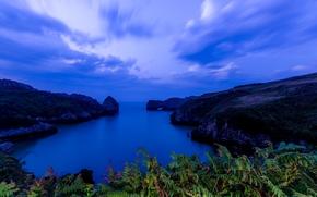Playa De Berellín, Prellezo, Val de San Vicente, Cantabria, Spain, Bay of Biscay, Валь-де-Сан-Висенте, Кантабрия, Испания, Бискайский залив, залив, море, бухта, скалы, папоротник