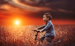 boy, bike, field, sunset, mood