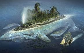 кит, остров, корабль, парусник, лес, птицы, чайки, океан, море вода, прикол, юмор