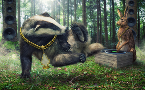 badger, hare, DJ, DJ, disco, brakedance, chain, forest