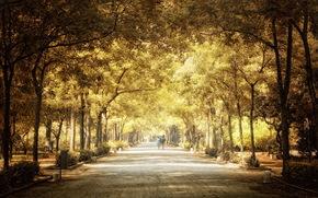 город, парк, осень, деревья, люди, дорога