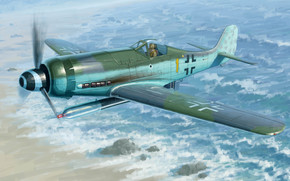 Art, plane, Luftwaffe, Germany, Focke-Wulf FW190D-12 R14
