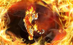 tiger, fire, 3d, art