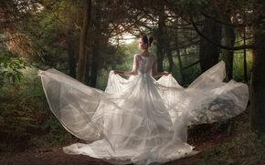 matrimonio, sposa, Abito da sposa, vestire, foresta, alberi