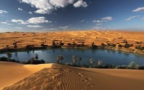 desert, Sugar, Oasis, sand, sky, lake, obloka, Africa, Libya