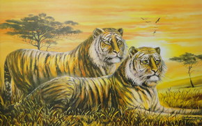 Art, Tigers, watch, two, savanna