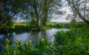 Amberley Pond, West Sussex, united kingdom