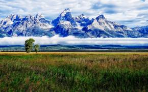 Timeless Tetons, Grand Teton National Park, Jackson Hole, Wyoming, USA