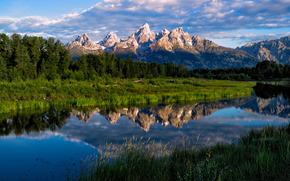 mattinata, Schwabacher, Wyoming, USA