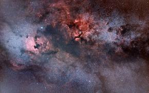 Nebulosa Pellicano, costellazione, universo, spazio, Stella
