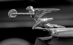 Packard, Goddess of Speed, Packard Hood Ornament, hood, icon, Mono, black and white, Macro