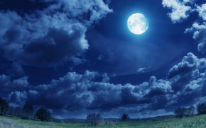 moon, sky, clouds, grass, trees, nature, landscape