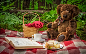 picnic, Teddy Bear, bear, toy, basket, book, cup, sandwiches, nature