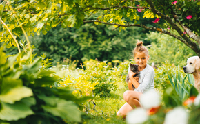 girl, kitten, dog, Friends, mood, nature