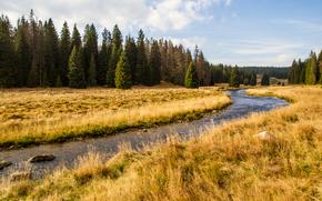 Roklansky potok, valley, Czech Republic