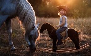мальчик, наездник, лошадка, качалка, шляпа, лошадь, конь