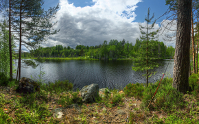 岛, Kilpola, 拉多加, 湖, 卡累利阿, 俄国, 性质, 景观, 森林, 树, 天空, 云
