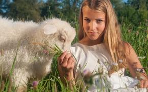 девушка, взгляд, овечка, ягнёнок, настроение, луг
