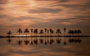 Miami, Florida, Atlantic Ocean, Майами, Флорида, Атлантический океан, океан, закат, пальмы, отражение