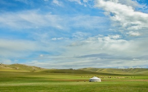 field, cabin, Hills, Sheep, grass, sand, clouds, Mongolia, nature, landscape