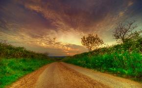 sunset, road, landscape
