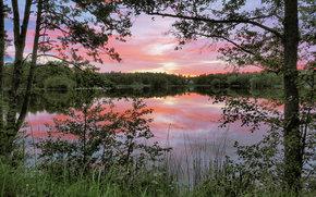 Nacka, Svezia, Prendilo, Svezia, lago, mattinata, DAWN, alberi, riflessione